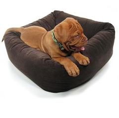 Bowsers Dutchie Sweet Sleeper (Solids) Dog Bed