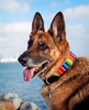 Rainbow: Kenyan Maasai Beaded Dog Collar