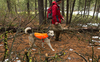 High-Visibility Reflective Dog Coat - Track Jacket