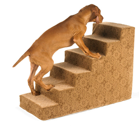 Pet Steps for Dogs