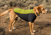 Waterproof Windproof Cloudchaser Dog Coat