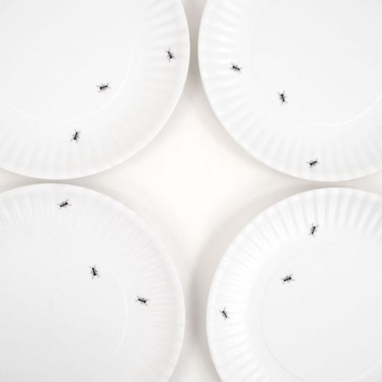 "Washable ""Paper"" Plate w/Ants Set/4"