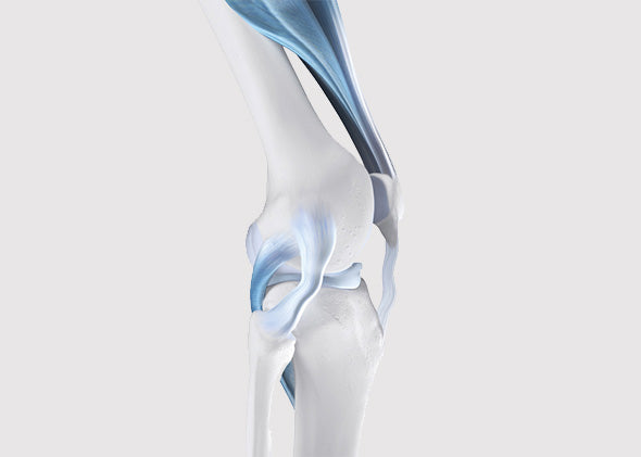 Causes Of Knee Instability