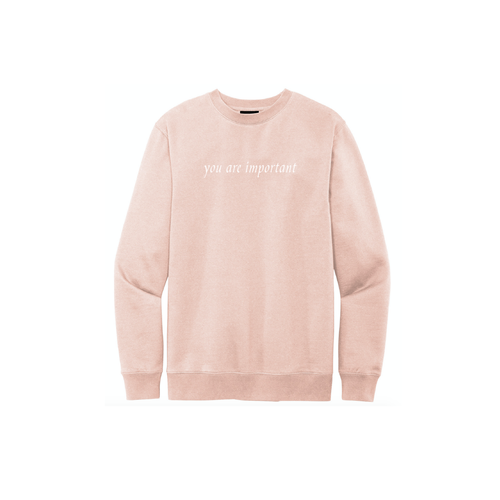 "rose water pink / light pink ""you are important"" crew neck sweatshirt"