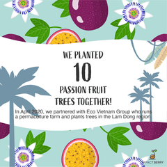 Buy Coffee Beans, Plant Trees: Impact Berry organic fair trade Coffee Hong Kong_passionfruit