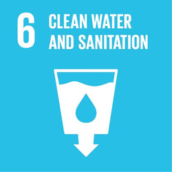 UN Sustainable Development Goal 6 - Clean Water - Impact Berry