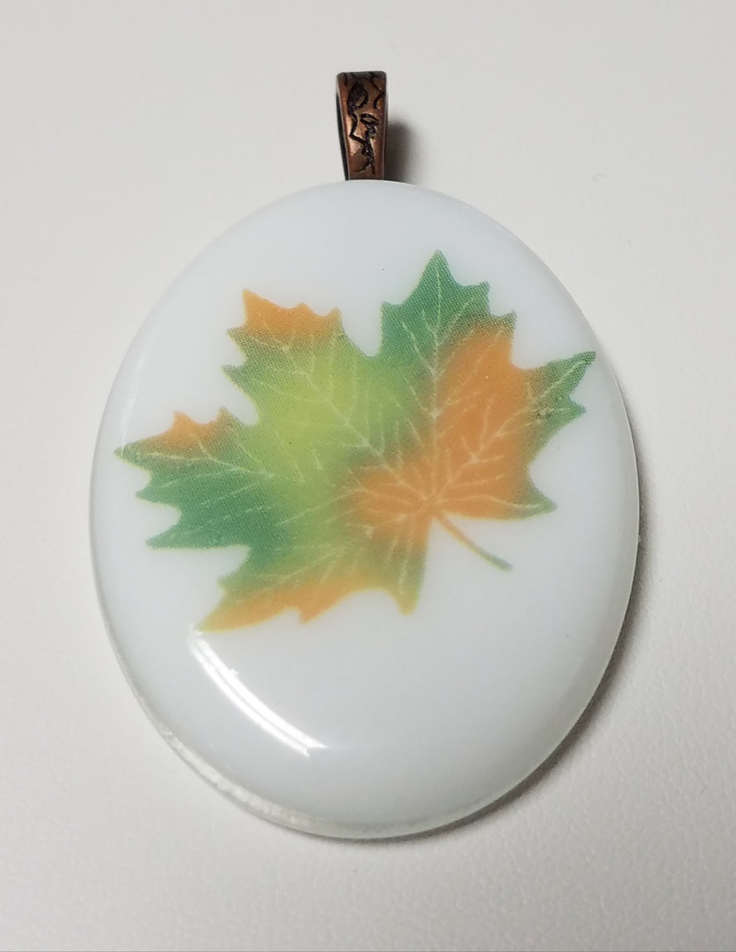 Fall turning colors maple leaf on white glass