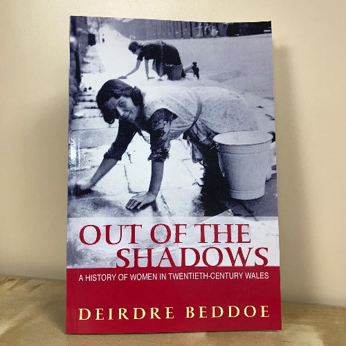 Out of the Shadows - A History of Women in Twentieth-Century Wales
