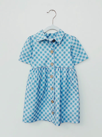Blue Gingham Button Up Dress - Lemon and Lucy
