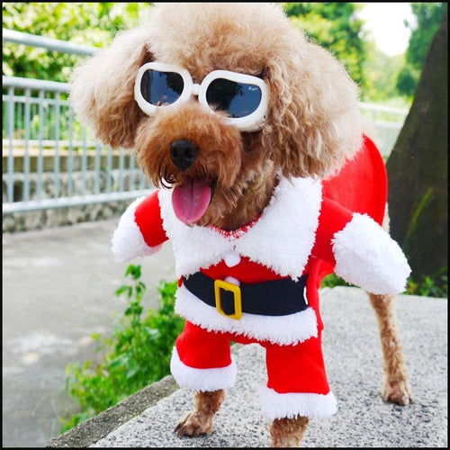 Christmas Dog Costume Clothes Festival Cosplay Pet Transfiguration Cat Dog Christmas Dress Christmas Gift