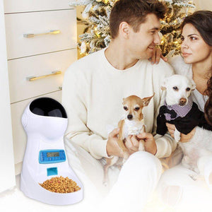 3L Automatic Pet Feeder With Voice Record Pets food Bowl For Medium Small Dog Cat LCD Screen Dispensers 4 times One Day