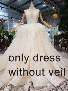Open back sleeveless Wedding Dress with wedding veil tassel backless  v-neck shiny bridal dress wedding gown with peplum