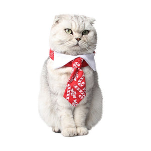 Adjustable Christmas Printing Cat Collar Halloween Pet Red Collar Dress up Christmas Costume Cat Funny Costume Gato Accessories