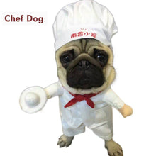 Load image into Gallery viewer, Cat Dog Costumes Star Chef Cosplay Suit Chef Cat Apparel Halloween Christmas Outfit Clothes For Puppy Dog Costume for a cat