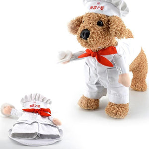 Cat Dog Costumes Star Chef Cosplay Suit Chef Cat Apparel Halloween Christmas Outfit Clothes For Puppy Dog Costume for a cat