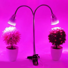 Load image into Gallery viewer, LED Grow Light 10W Plant Lamp Dual Head with Double on/off Switch for Houseplant Flower Indoor Seedlings Greenhouse Growing lamp