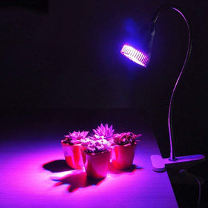 LED Grow Light 5W Plant Lamp with Clip 360 Degree Flexible for Indoor Flowers Houseplants Seeds Greenhouse Growing Phyto-lamp