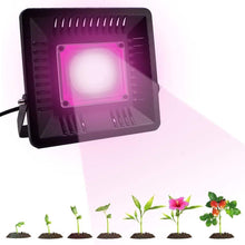 Load image into Gallery viewer, LED Grow Light Full Spectrum 100/200W Plant Lamp COB Waterproof IP67 for  Indoor Flower Houseplant Greenhouse Growing Phyto-lamp
