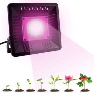 LED Grow Light Full Spectrum 100/200W Plant Lamp COB Waterproof IP67 for  Indoor Flower Houseplant Greenhouse Growing Phyto-lamp