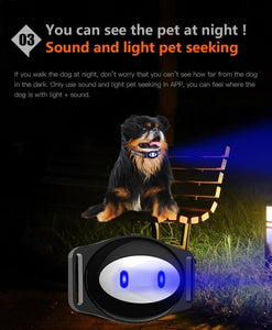 Pet GPS Tracker D79 Dog Collar GPS Waterproof IP68 Cat GPS Locator Realtime Tracking Device Geofence WiFi LBS Locate Free APP