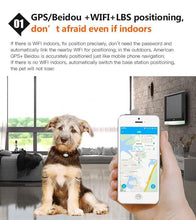 Load image into Gallery viewer, Pet GPS Tracker D79 Dog Collar GPS Waterproof IP68 Cat GPS Locator Realtime Tracking Device Geofence WiFi LBS Locate Free APP