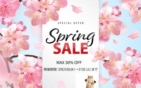 Flash Spring SALE