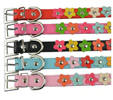 Cute and Bright Leather Flower Collar, Collars & Leashes - Puppies & Pals