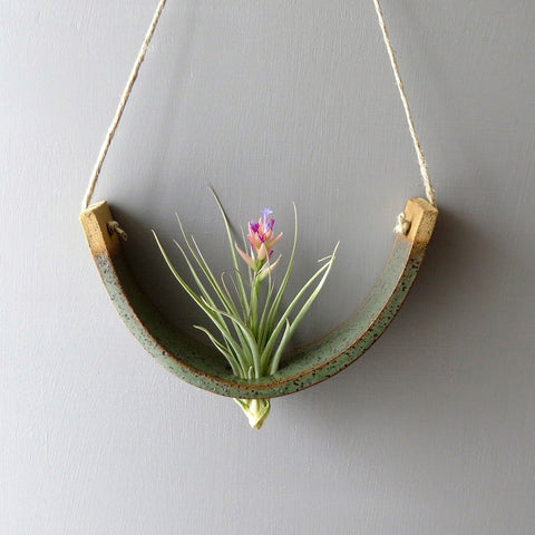 Gunmetal Green Hanging Air Plant Cradle - Bestowed Shop