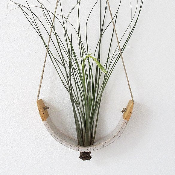 Gloss White Speckled Buff Hanging Ceramic Air Plant Cradle - Bestowed Shop