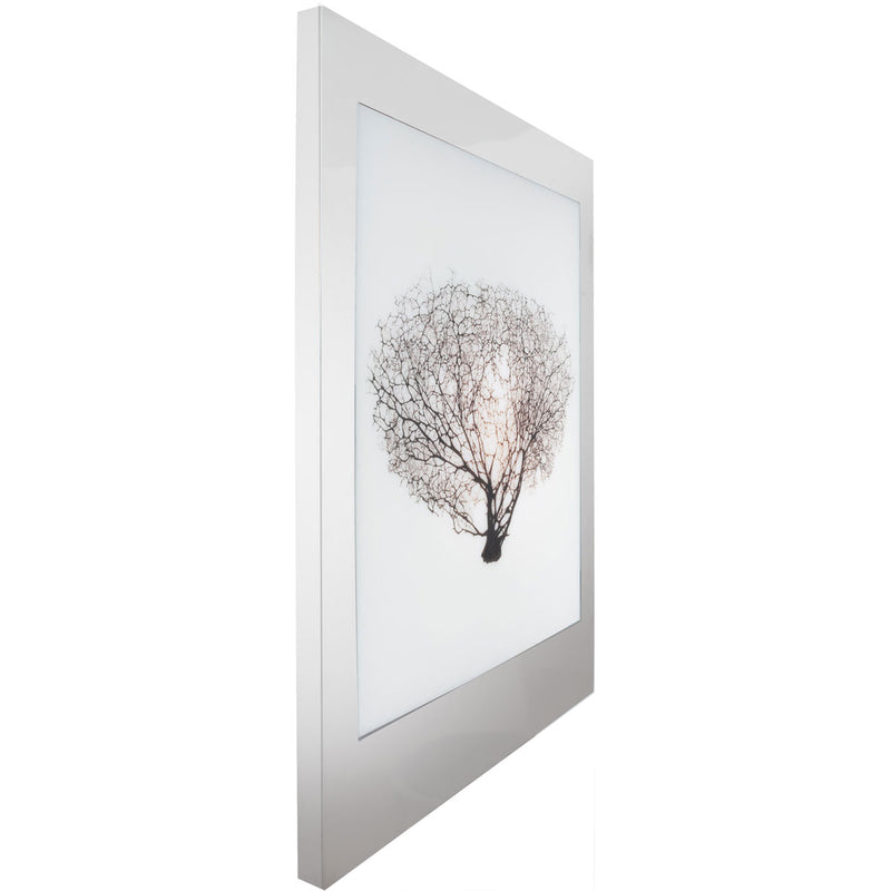 Aviation Lightbox Frames: Sea Fan 1