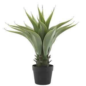 "Faux Agave Plant in Pot 22""H"