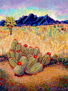 New Mexico Optima Cactus - Artistic Transfer, LLC