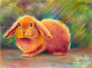 Orange Bun Bun - Artistic Transfer, LLC