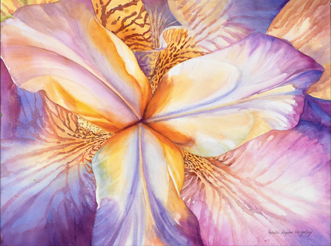 Iris Kaleidoscope by Lynda Kingsley - Artistic Transfer, LLC