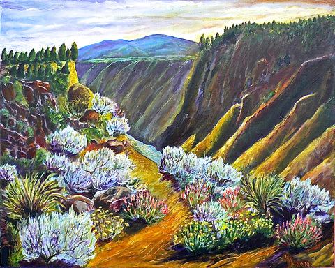 Wild Rivers, New Mexico - Artistic Transfer, LLC