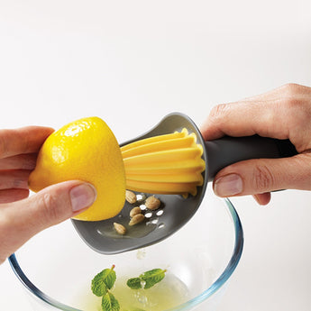 Hand Manual Squeezer