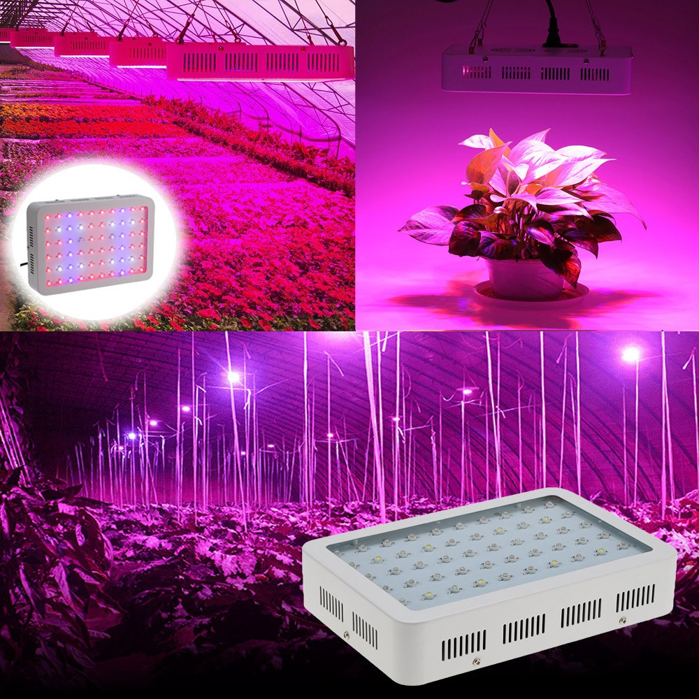 LED Plant Grow Light