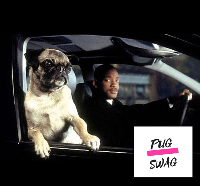 Pugs in movies! Have you seen these?