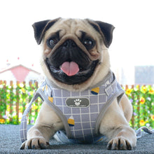 Load image into Gallery viewer, pug swag grey square harness