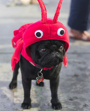 Load image into Gallery viewer, The Lobster