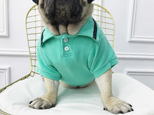 Load image into Gallery viewer, pug swag club tee / t-shirt for small dogs the swag polo, in orange, cyan or grey.