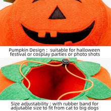 Load image into Gallery viewer, The Pumpkin