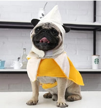 Load image into Gallery viewer, front view of pug swag The Banana Silly Cosplay Costume for Pug Dog Party Dress-Up. Material: Polyester. Size: S, M, L, XL. Yellow and white.
