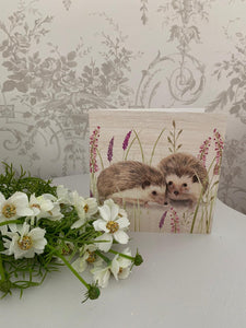Greetings Card ... Hedgehog