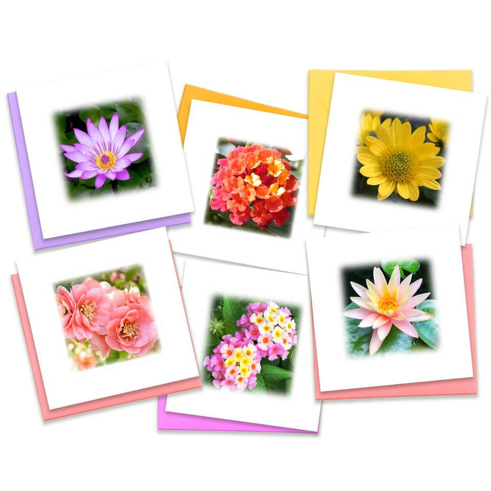 Single Mini Greeting Cards | Enclosure Cards