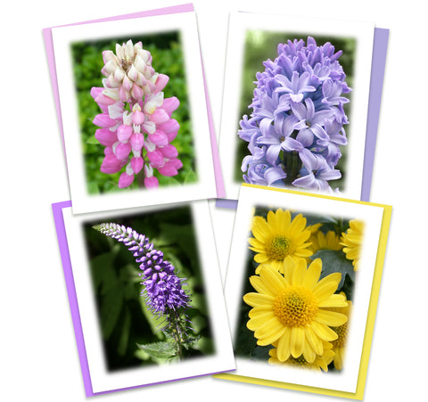 Colorful Garden Greeting  Card Assortment | Set of 4