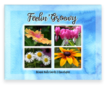 Feeling Groovy A2 Greeting Cards Assorted, Hibiscus, Bleeding Heart, Daisy, Brown Eyed Susan Flowers