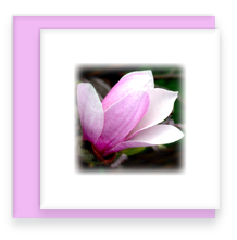 Mini Greeting Card with Envelope Magnolia Flower