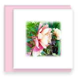 Beautiful Morning Mini Square Greeting Cards Assorted set Peony