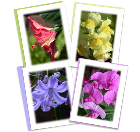 Rainbow Garden Greeting Card Assortment | Set of 4